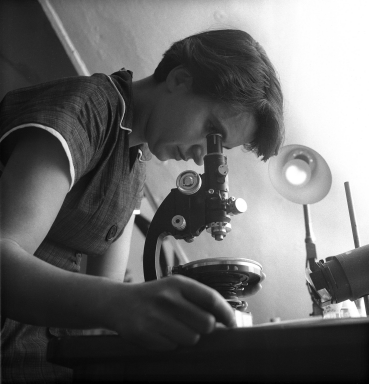 Franklin looks in a microscope