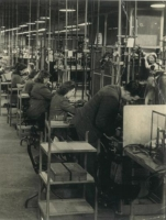 Rows of women at the Marconi Factory in Chelmsford working on electronics