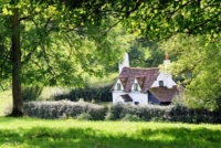 An old cottage nestling behind hedges at the edge of a field