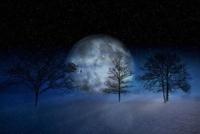 a winter moon