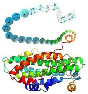 A colourful coil of fibre - which becomes a string of dots with letters referring to the TAU protein which becomes a series of musical notes on a stave